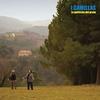 Cover of the album Le politiche del prato