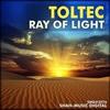 Couverture de l'album Ray Of Hope
