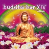Couverture de l'album Buddha Bar XIV (Selected By DJ Ravin)