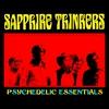 Couverture de l'album Psychedelic Essentials