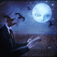 Couverture du titre Lullabies for the Dormant Mind