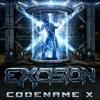 Couverture du titre Codename X