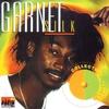 Couverture de l'album Collectors Series: Garnett Silk