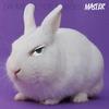 Cover of the album Master