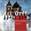 Cover of the track Carmina burina, Fortuna