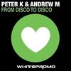 Couverture de l'album From Disco to Disco - Single