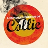 Cover of the album A Hundred Pounds of Collie