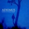 Cover of the track Adiemus