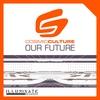 Couverture de l'album Our Future