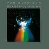 Couverture de l'album Beautiful Vision