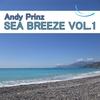 Couverture de l'album Sea Breeze, Vol. 1