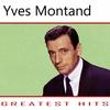Cover of the track Ainsi va la vie