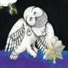 Couverture de l'album The Magnolia Electric Co.