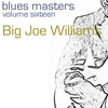 Cover of the album Blues Masters Big Joe Williams (Volume 16)