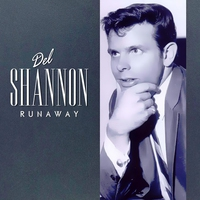Cover of the track Runaway