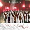 Couverture de l'album An Audience of Angels