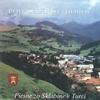 Cover of the album Pod Zelenou Horou