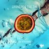 Couverture de l'album Living for the Day - Single