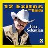 Couverture de l'album 12 Exitos Con Banda - Joan Sebastian