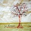Couverture de l'album Limbs and Branches