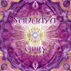 Cover of the album Unity