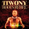 Couverture de l'album Roots Rebel