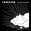 Couverture de l'album The Flying Pyramid
