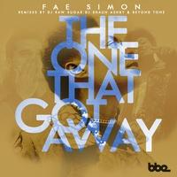 Couverture du titre The One That Got Away - EP