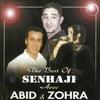 Couverture de l'album The Best Of Senhaji