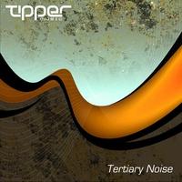 Couverture du titre Tertiary Noise