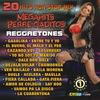 Couverture de l'album 20 Mega Hits Reggaeton Mix 1