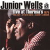 Couverture de l'album Live at Theresa's 1975
