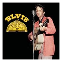 Couverture du titre Elvis At Sun (Remastered)