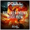 Cover of the album Rise Like a Phoenix - Single