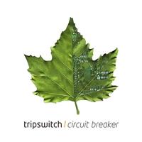Couverture du titre Circuit Breaker