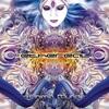 Couverture de l'album Anima Mundi