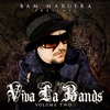 Cover of the album Bam Margera Presents: Viva La Bands, Volume 2