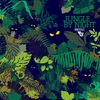 Cover of the album Jungle by Night