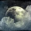 Couverture de l'album Musique du crépuscule