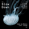 Cover of the album Slow Down
