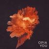 Couverture de l'album Ydu - Single