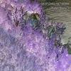 Cover of the album Cyber Sleep 8