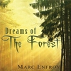 Cover of the album Dreams of the Forest