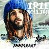 Cover of the album Immigrant