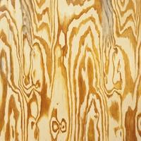Cover of the track Wooden Aquarium