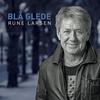 Couverture de l'album Blå Glede