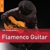 Couverture de l'album The Rough Guide to Flamenco Guitar
