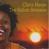 Cover of the album The Saliah Remixes