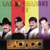 Couverture de l'album Los 30 Grandes de Bronco