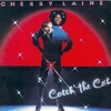 Couverture de l'album Catch The Cat